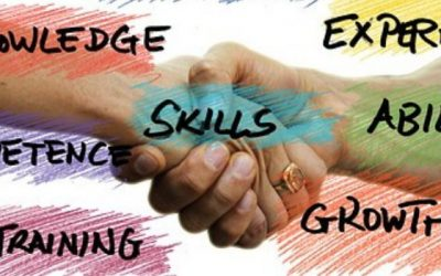 Making Skills Development work