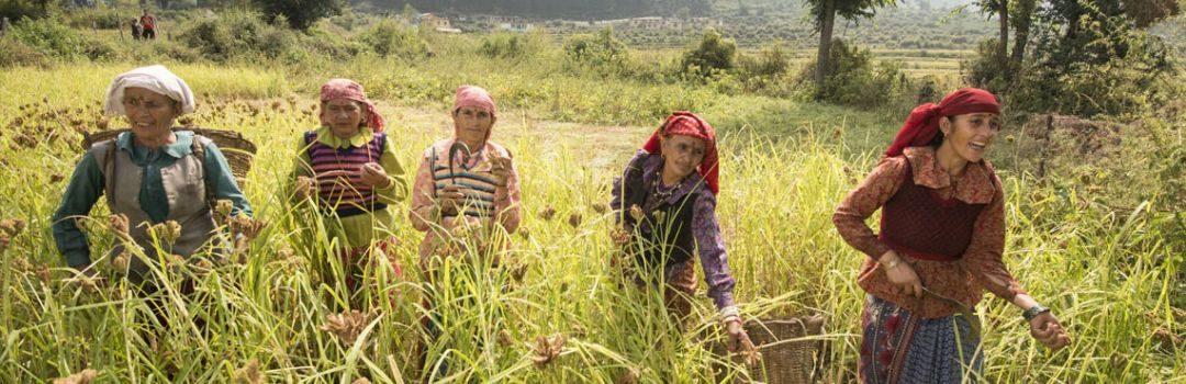 Skill Development Programs for Farmers and Women