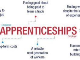 Apprenticeships- the twin perspective